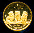 Isle of Man 2006 Exotic Shorthair Kittens Gold Coin